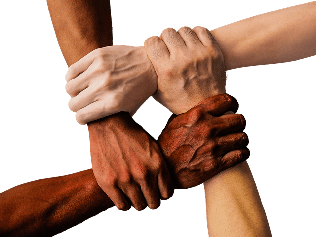 Kulturallgemeines Training - Länderübergreifendes interkulturelles Training